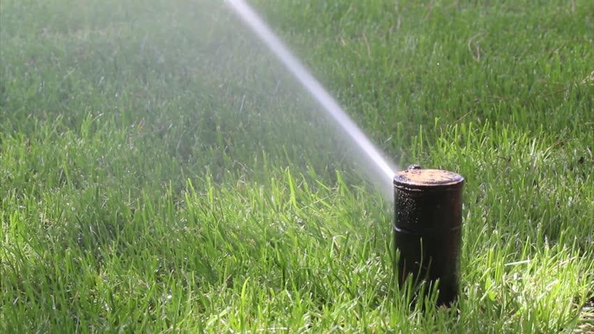 irrigation ped-dnv intelkia